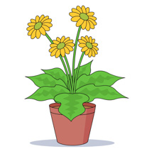 Blooming Flowers In A Pot Clipart Size 139 Kb From