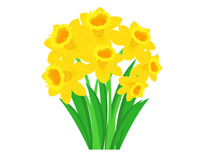 Free flowers clipart clip art pictures graphics illustrations bunch of yellow daffodil spring flower clipart size 74 kb mightylinksfo