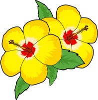 Search Results For Hibiscus Clip Art Pictures Graphics