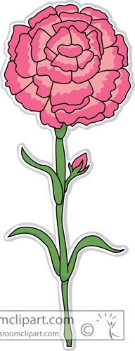 carnation_flower_clipart-306.jpg