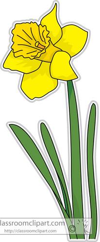daffodil_flower_clipart-313.jpg