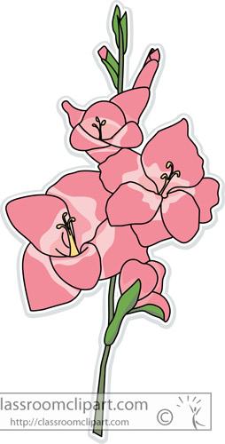 gladiolus_flower.jpg