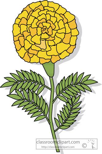 marigold_flower_clipart-307.jpg
