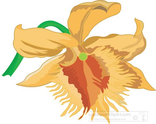 orchid-clipart-3-04-0804aA.jpg