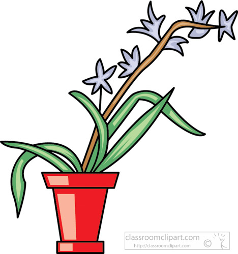 orchid-in-vase-clipart.jpg