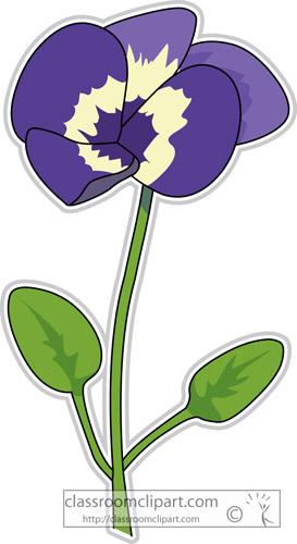pansy_flower_clipart-307.jpg