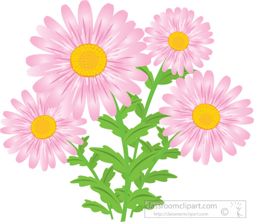 pink-daisy-flower-clipart-2.jpg