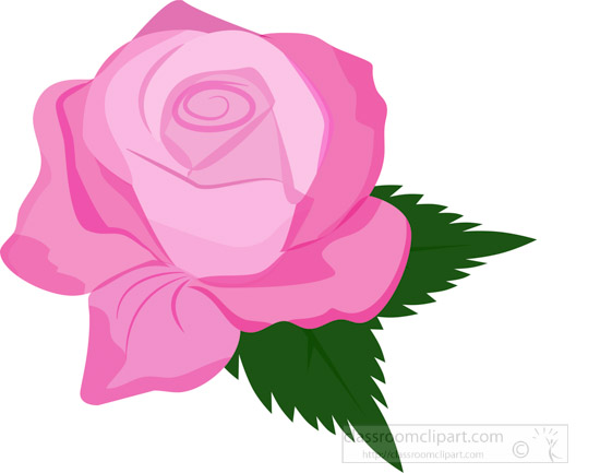 pink-rose-open-bloom-with-green-leaf-clipart-2.jpg