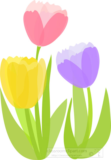 pink-yellow-purple-tulips-floral-clipart.jpg