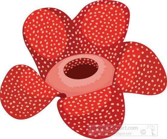 rafflesia-parasitic-plant-clipart.jpg