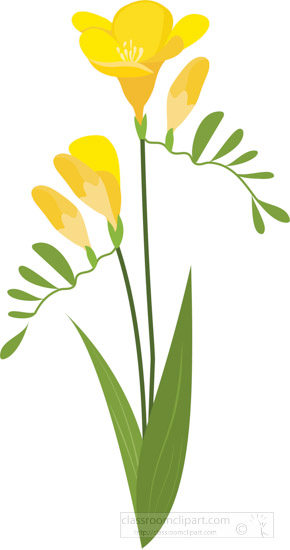 yellow-freesia-flower-with-leaf-clipart-image.jpg