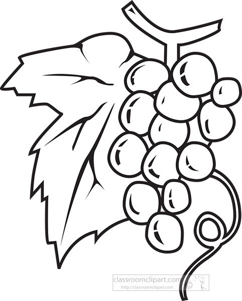 black-outline-fresh-grapes-on-stem-clipart.jpg