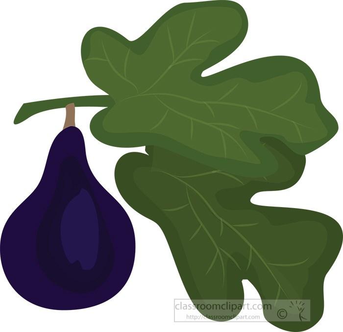 single-purple-fig-with-leaf.jpg