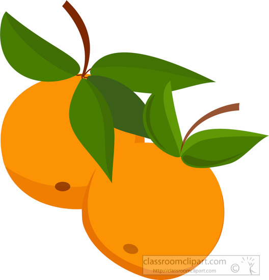 two-oranges-on-branch-with-leaves-clipart.jpg