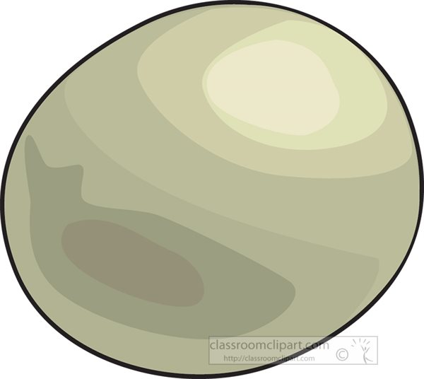 whole-kiwi-fruit-clipart.jpg