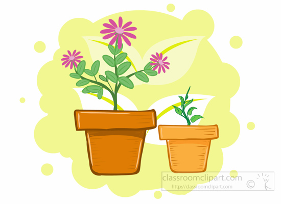 flower-plants-in-pots-clipart.jpg
