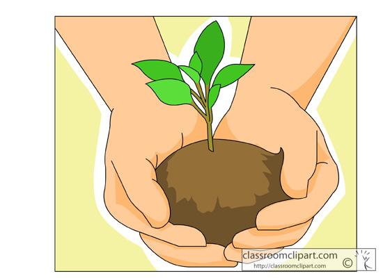hands_holding_seedling_plant.jpg