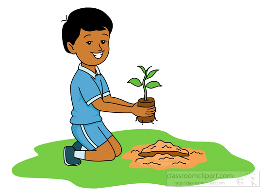planting-a-new-seedling-in-the-ground.jpg