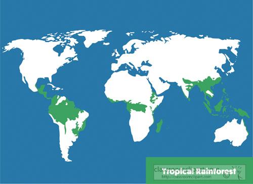 tropical-rain-forest-biome-clipart.jpg