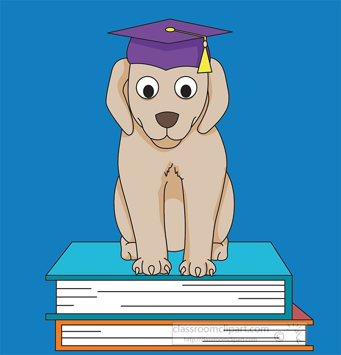 dog-with-graduation-cap-on-books-2021.jpg