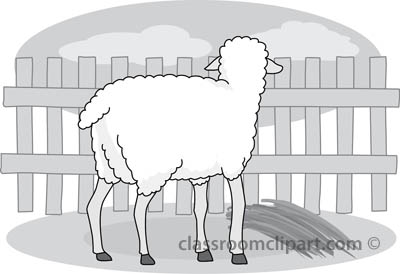 17_22A_sheep_gray.jpg