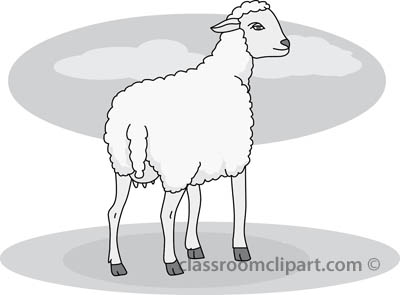 18_22A_sheep_gray.jpg