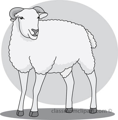 19_22A_sheep_gray.jpg