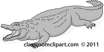aligator_2012-3-gray.jpg