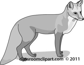 animal-fox-234-gray.jpg