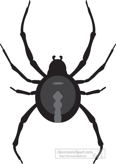black-widow-spider-insect-gray-clipart-818.jpg