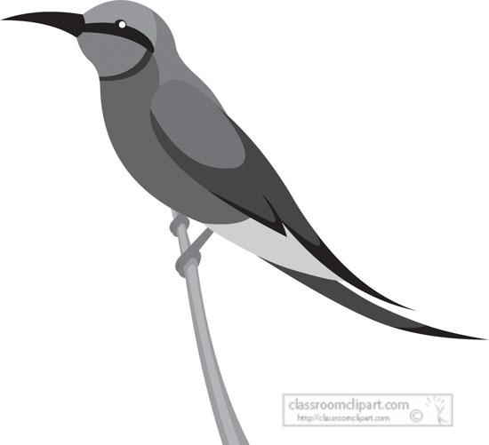 carmine-bee-eater-bird-gray-clipart.jpg