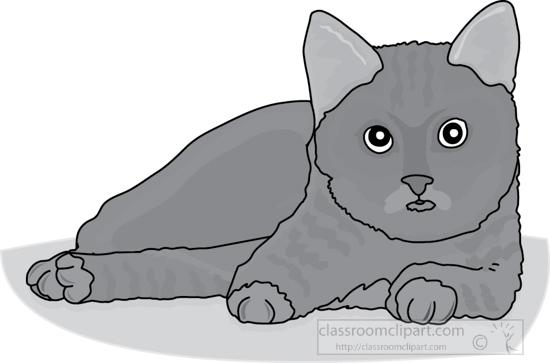 cat_327_3A_gray.jpg