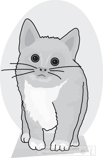cat_327_4A_gray.jpg