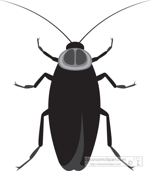 cockroach-insect-gray-clipart.jpg