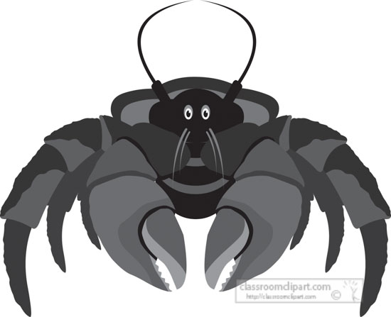 coconut-crab-marine-animal-gray-clipart-818.jpg
