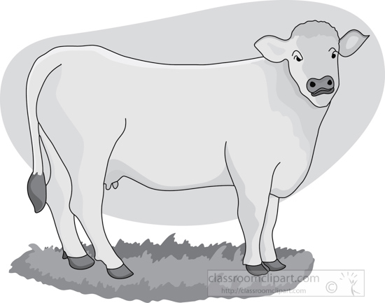 cow_in_pasture_gray.jpg