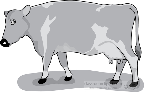 cow_on_grass_1_gray.jpg