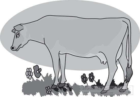 cow_standing_near_flowers_gray.jpg