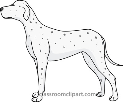 dalmation_dog_gray_22712.jpg