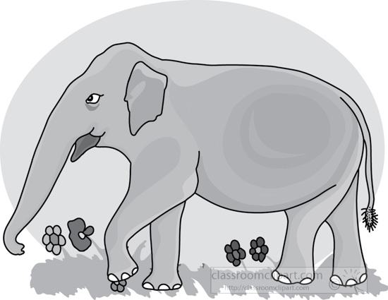 elephant_4-3612_flowers_gray.jpg