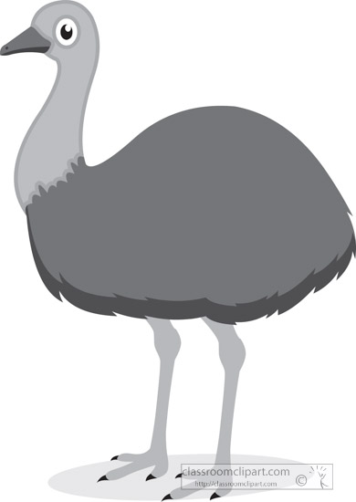 emu-bird-gray-clipart.jpg