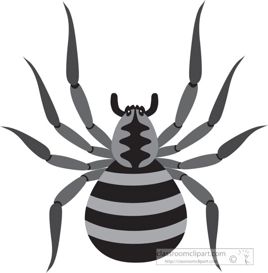 gray-clipart-of-brown-spider.jpg