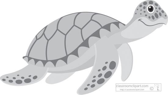 green-sea-turtle-marine-animal-gray-clipart.jpg