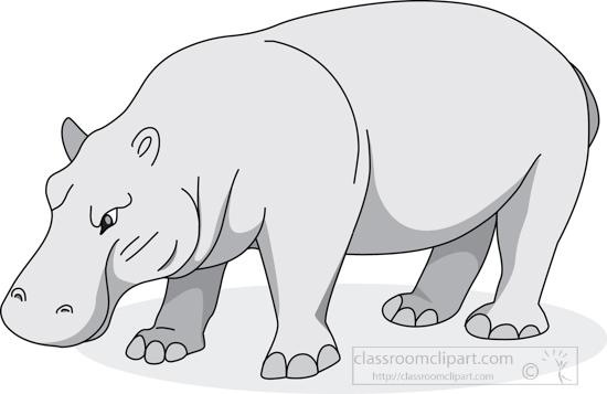 hippopotamus_05_2912_gray.jpg