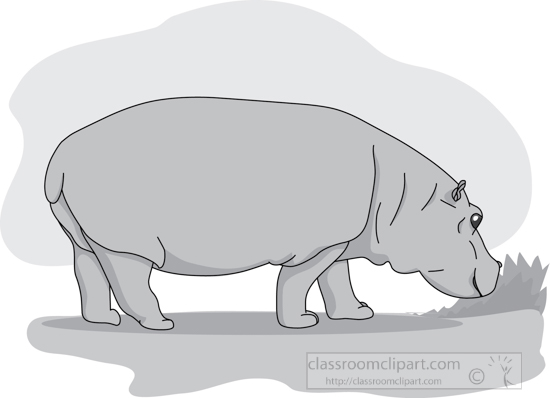 hippopotamus_blue_sky_grass_02_gray.jpg