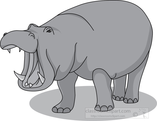 hippopotamus_mouth_open_212_3_gray.jpg