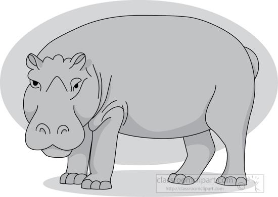 hippopotamus_standing_06_2912_gray.jpg