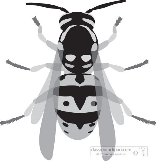 hornet-insect-gray-clipart.jpg