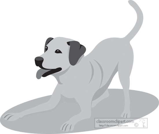 labradort-dog-gray-clipart-818.jpg