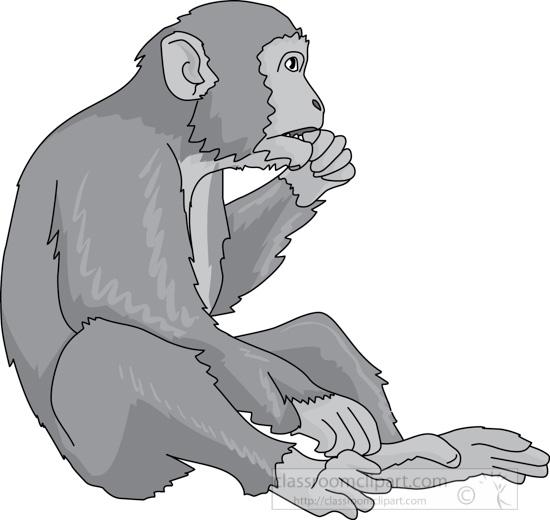 monkey_eating_02b_gray.jpg